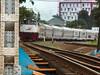 Argo Jati Cornering (Muh Nasrul K) Tags: fujifilm hs30exr train railway railways railfans railfanning argo jati jawa java indonesia
