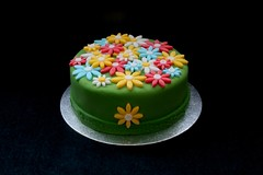 Chocolate Flower Fondant Cake (terencepkirk) Tags: chocolate birthday cake desserts delicious fondant food flowers 550d colour
