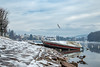 La prima neve (iLaura_) Tags: sestocalende neve snow landscape panorama paesaggio barca fiume cielo gabbiano boe