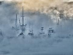 Wendys Fog SH NikC sm09 (Gillfoto) Tags: fog aukebay statterharbor winter alaska juneau ships yacht boat skiff