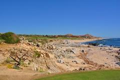 Cabo 2017 283 (bigeagl29) Tags: cabo2017 cabo san lucas beach golf course club scenic resort del sol scenery landscape