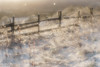 Sunshine and snowfall (Helena Normark) Tags: sunandsnow oldfence itssnowing snow heimdal pictorialism trondheim sørtrøndelag norway norge sonyalpha7 a7 50mm monocle монокль monolens russianlens