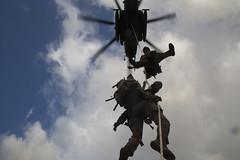 Spy-lining Exercise (jcccdimoc) Tags: hawaii marines recon reconaissance training usmc eastrangeschofieldbarracks unitedstates us
