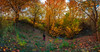 in the fall planet (samal photography) Tags: landscape nature amazing natural photography panorama planet fall wild wilderness valley autumn jungle people colors computation