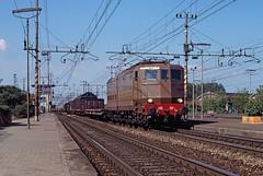FS E636 267 (maurizio messa) Tags: e636 ommarelli lombardia yashicafxd cargo mau bahn ferrovia freighttrain fret guterzuge railway railroad treni trains