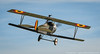 DSC_5183 (dwhart24) Tags: 12 twelve o clock high lakeland florida fl paradise field david hart frank tiano nikon rc radio remote control airplane aircraft