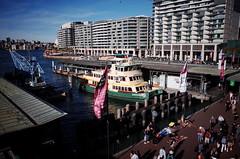(bigboysdad) Tags: sydney nsw newsouthwales ricoh gr australia circularquay firstfleetclass borrowdale ferry vessel boat wharf people busker water building city sea