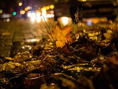 20171110-054 (sulamith.sallmann) Tags: fahrzeug abends auto autos autumn berlin car deutschland germany herbst mitte nacht nachtaufnahme nachts night nightshot soldinerkiez vehicle wedding deu sulamithsallmann