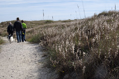 Scenes from the Trail (Susan Sharpless Smith) Tags: hike fortmacon trail