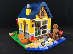 2017-325 - National Gingerbread Day (Steve Schar) Tags: 2017 wisconsin sunprairie iphone iphone6s project365 lego minifigure gingerbread gingerbreadcookie nationalgingerbreadday house cookie coffeecup water dock