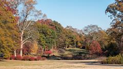 Olmsted Linear Park in fall colors (Marc Merlin) Tags: druidhills fall olmstedlinearpark atlanta georgia unitedstates