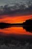 Sunset (Stefano Rugolo) Tags: stefanorugolo pentax k5 smcpentaxda1855mmf3556alwr verticalformat sunset red colors water lake reeds landscape nature sky silhouettes reflections hälsingland sweden sverige svezia tramonto solnedgång sjö