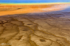 Cellular_27A0619 (Alfred J. Lockwood Photography) Tags: alfredjlockwood nature abstract grandprismatic color patterns shapes texture summer morning microbialmat thermophiles extremophiles yellowstonenationalpark wyoming geothermalpool geothermalrunoff