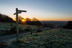 Newlands Corner (ed027) Tags: ifttt 500px sunrise sunset nature sunlight tree road path walk fence landscapes sundown dawn frost colours footpath early natural light boulevard avenue blue hour golden signpost country dirt telephone pole horizon over land thoroughfare michelstadt middle single lane
