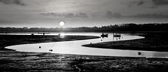 Bit more of a Twist (Solent Poster) Tags: monochrome bw pentax 2470mm k1 emsworth thorneyisland sunset sunrise lowtide coastalpath
