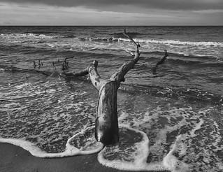 The Baltic Sea Impressions (2)