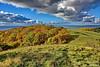 Landschaft im Herbst (garzer06) Tags: wolken blau mönchgut deutschland herbst landschaftsfoto herbstlandschaft landschaftsbild mecklenburgvorpommern wolkenhimmel vorpommernrügen landscapephotography naturphotography ostsee vorpommern naturfoto naturfotografie inselrügen grün baum insel herbstzeit rügen landschaftsfotografie