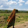 10. Great East Road. (ColaLife) Tags: colalife rohit kyts kytsace chipata