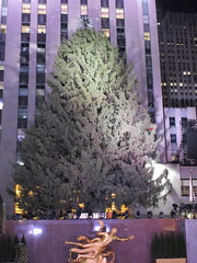 2017 Christmas Tree Rockefeller Center before lighting 4248 (Brechtbug) Tags: 2017 christmas tree rockefeller center before lighting 11252017 nyc 30 rock new york city standing up above ice rink with snow shoveling workers skating holiday decoration ornaments night lights lites light oversize load ornament prometheus gold mythological statue sculpture fountain fountains post thanksgiving