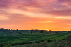 DSC00042_s (AndiP66) Tags: pienza toscana sonnenuntergang sunset nebel dunst fog mist sonne sun evening abend april spring 2017 sony sonyalpha 7markii 7ii 7m2 a7ii alpha ilce7m2 sigma sigma24105mmf4dghsmart sigma24105mm 24105mm art amount laea3 andreaspeters siena sanquiricodorcia valledorcia valle dorcia tuscany italien italy