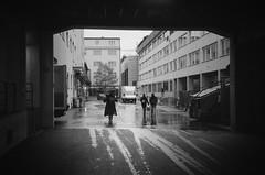 november rain (gato-gato-gato) Tags: 35mm ch delta3200 iso1000 ilford ls600 nikon noritsu noritsuls600 schweiz strasse street streetphotographer streetphotography streettogs suisse svizzera switzerland zoom300 zueri zuerich zurigo z¸rich analog analogphotography believeinfilm film filmisnotdead filmphotography flickr gatogatogato gatogatogatoch homedeveloped pointandshoot streetphoto streetpic tobiasgaulkech wwwgatogatogatoch zürich black white schwarz weiss bw blanco negro monochrom monochrome blanc noir strase onthestreets mensch person human pedestrian fussgänger fusgänger passant sviss zwitserland isviçre zurich