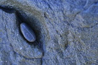 Stone look