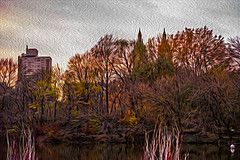 1341_0498FLOP (davidben33) Tags: newyork central park street streetphotos people nature trees bushes leaves colors green yellow blue sky cloud lake portraits women girl cityscape landscape autumn fall 2017 beauty