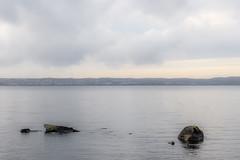 (Housemill) Tags: vättern vatten vätterstranden water rocks huskvarna sweden sverige lx5 lumix landscape landskap panasonic pointandshoot pointshoot availablelight