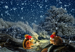 Christmas dinner (Palmsgb) Tags: christmas squirrels snow dinner nuts treetrunk photoshop