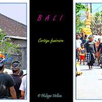 Cortège funéraire©  à Bali thumbnail