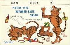 Tiger Lily & Flying Tiger - Hayward, California (73sand88s by Cardboard America) Tags: qslcard qsl cbradio cb vintage california tiger artistcard