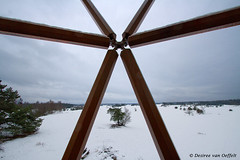 Breaking out (Desiree van Oeffelt) Tags: nederland netherlands kootwijk kootwijkerzand snow nature outdoors hiking hike desireevanoeffelt canon clouds cloud tree trees forest tower