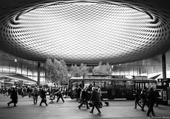 Station de tramway, Bâle, Suisse (Etienne Ehret) Tags: bâle basel suisse schweiz city tramway station street rue blanc noir noirblanc bw black white canon 5d mark iii 1740mm sériel f4
