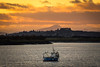 The Shore - 12 Nov 2017 - 01.jpg (ibriphotos) Tags: pylons alloa benlomond sunset stirlingcastle stirling riverforth graffiti sky theshore alloaharbour evening goldenhour harbour sunsets