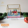 BROOKLYN DIY (DO IT YOURSELF) LUXURY CHRISTMAS GIFT TERRARIUM HAMPERS SANDART (luxeova) Tags: luxeovachristmas luxeovahampers terrarium terrariums glassbox terrariumlove diychristmas terrariumart glassterrarium geometricterrarium australianflorist etsyseller londonflorist terrariumdesignnewyorkwedding australiawedding londonweddings christmashampers christmashamper christmasgift christmasgifts christmasgiftidea christmasgiftideas christmasgiftsideas christmasgiftguide christmaswedding sandart christmaspresent luxurygifts