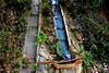 Rec, les Dous, Torrelles de Foix. (Angela Llop) Tags: catalonia spain penedes torrellesdefoix rec acequia