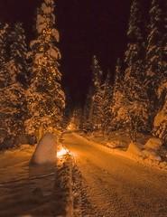 Emerald lake Bristish Columbia Rockies (gri_mountainlakes) Tags: november road path snow nuit dore emeraldlakelodge