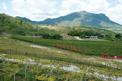 Monsoon Valley Hua Hin