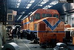 2869 DB1581 Midland Workshops 14 March 1982 (RailWA) Tags: railwa philmelling westrail 1982 db1581 midland workshops