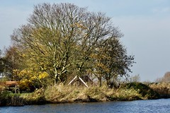 DSC05994 (hofsteej) Tags: middendelfland holland zuidholland netherlands vlaardingervaart broekpolder natuurmonumenten