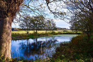 The Priory Pond