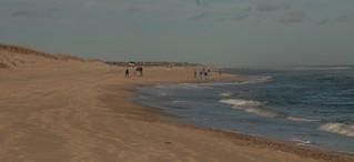 November Beach Day
