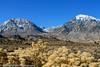Owens Valley-91 (Denise Noelle Photography) Tags: owensriver bishopca sierranevadamountains monolake lonepine junelake mammothlakes