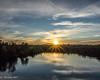 DSC03550 (C~ Birdsong Photography) Tags: folsom rainbowbridge historicfolsom americanriver reflections sunset kayak paddleboard sony photography art travel