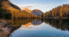 "Lai da ""Mirror"" (PhiiiiiiiL) Tags: bergünbravuogn graubünden schweiz ch lai da palpuognagrisons panorama autumn reflection"