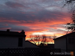 November 26, 2017 - Another amazing Colorado sunset. (Jessica Bloom)