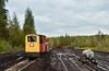 Ls600-10680 (Radosław Matysek) Tags: ls600 ls60010680 narrow gauge diesel greenyard horticulture hollas peat józefowo poland