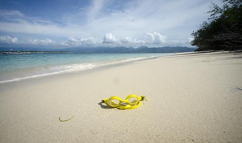 No Money for Snorkel