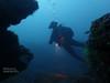 Belharra Canyon (YellowSingle 单黄) Tags: belharra socoa perdun canyon scuba diving exploration olympus tg4 atlantic