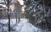 The walk to Loch Vaa (Katherine Fotheringham) Tags: loch vaa scotland snow winter path aviemore